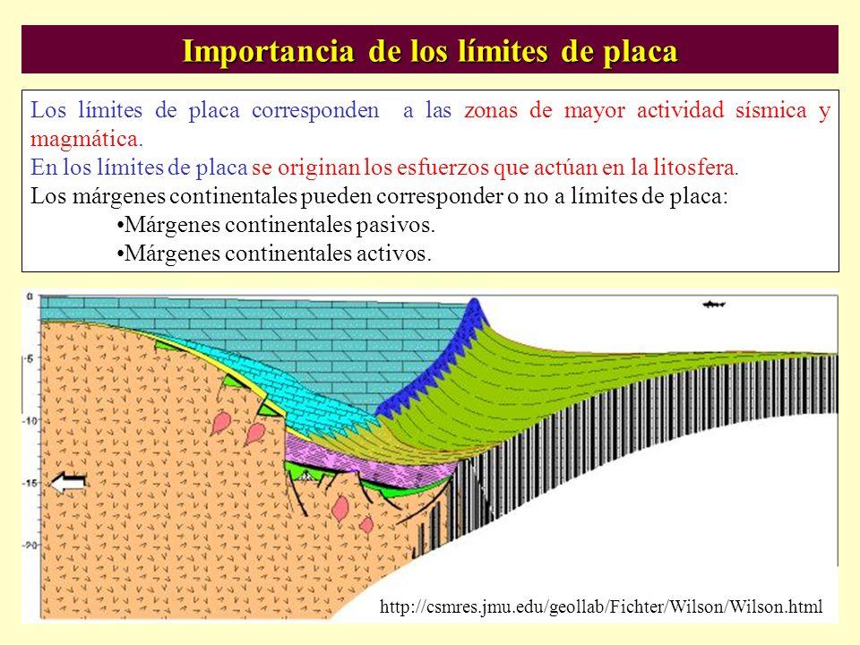 Importancia de los límites de placa Los límites de placa corresponden a las zonas de mayor actividad sísmica y magmática. En los límites de placa se o