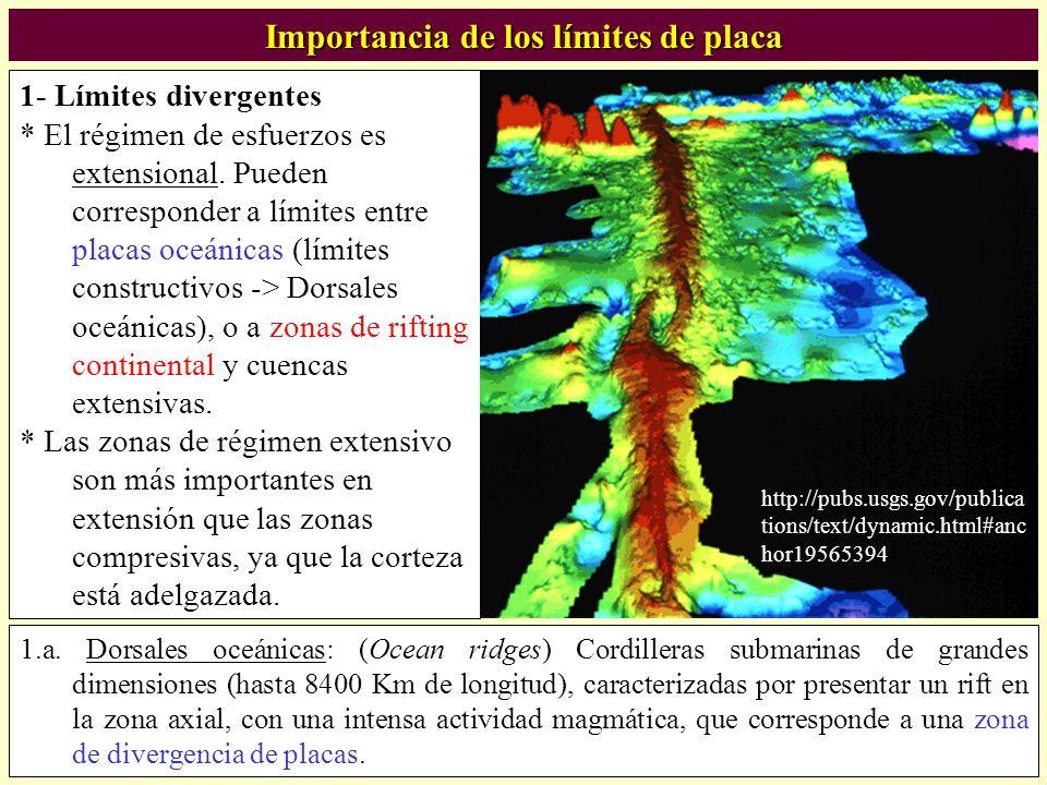 Importancia de los límites de placa 1- Límites divergentes * El régimen de esfuerzos es extensional. Pueden corresponder a límites entre placas oceáni