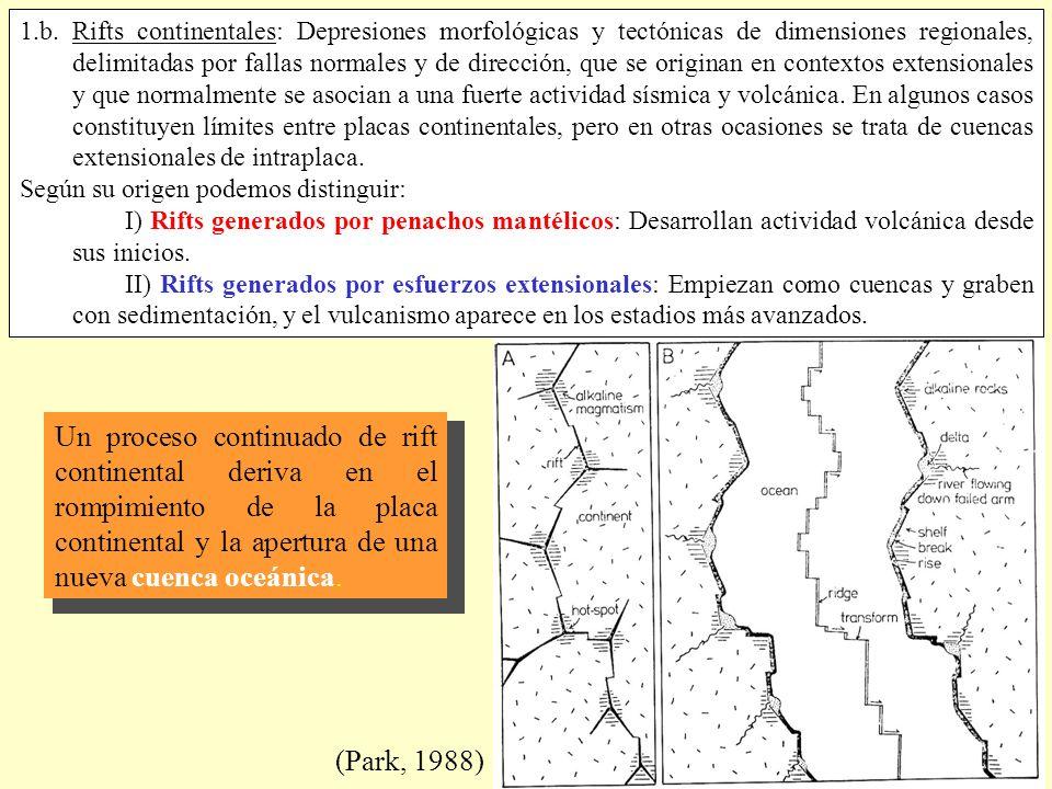 (Park, 1988) Un proceso continuado de rift continental deriva en el rompimiento de la placa continental y la apertura de una nueva cuenca oceánica. 1.