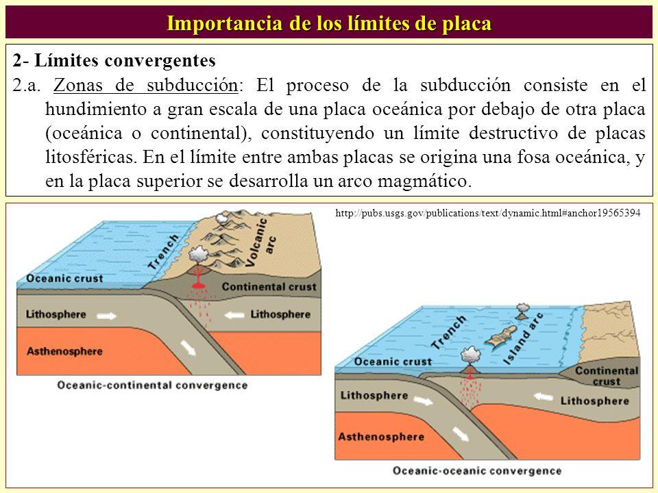 Importancia de los límites de placa 2- Límites convergentes 2.a. Zonas de subducción: El proceso de la subducción consiste en el hundimiento a gran es