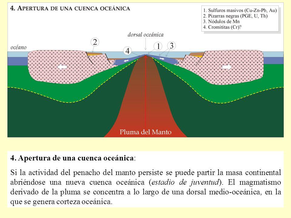 4. Apertura de una cuenca oceánica: Si la actividad del penacho del manto persiste se puede partir la masa continental abriéndose una nueva cuenca oce