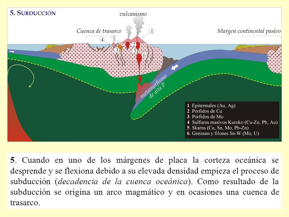 5. Cuando en uno de los márgenes de placa la corteza oceánica se desprende y se flexiona debido a su elevada densidad empieza el proceso de subducción