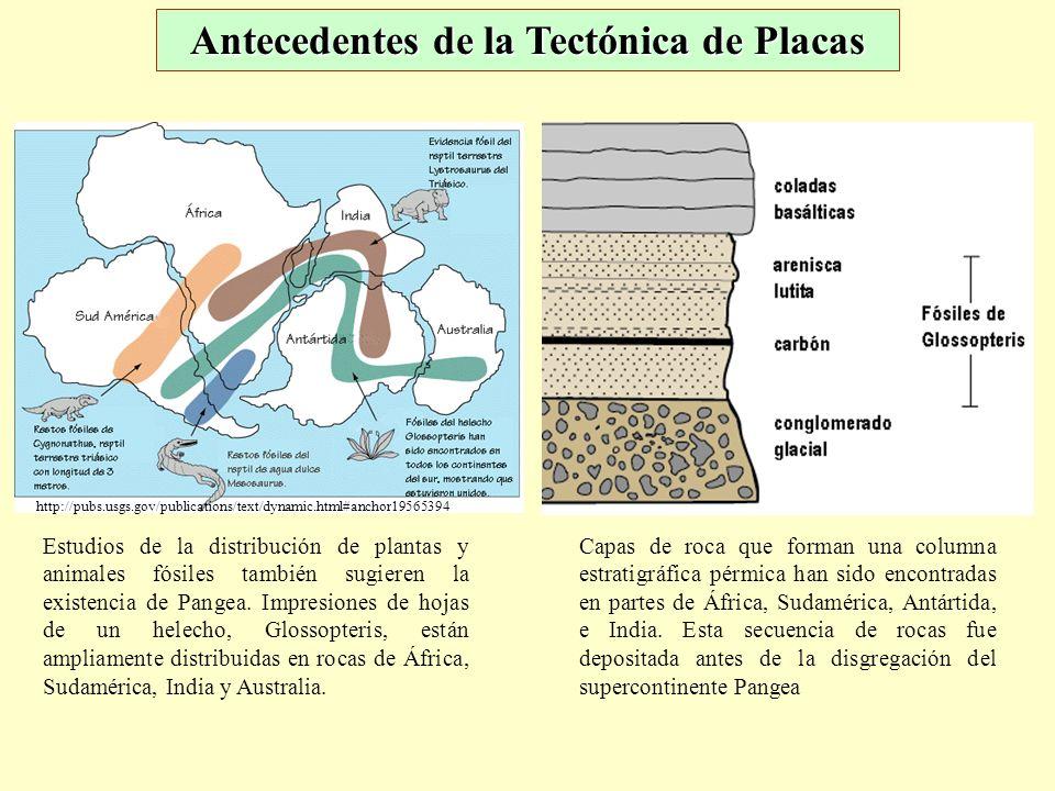 Capas de roca que forman una columna estratigráfica pérmica han sido encontradas en partes de África, Sudamérica, Antártida, e India. Esta secuencia d