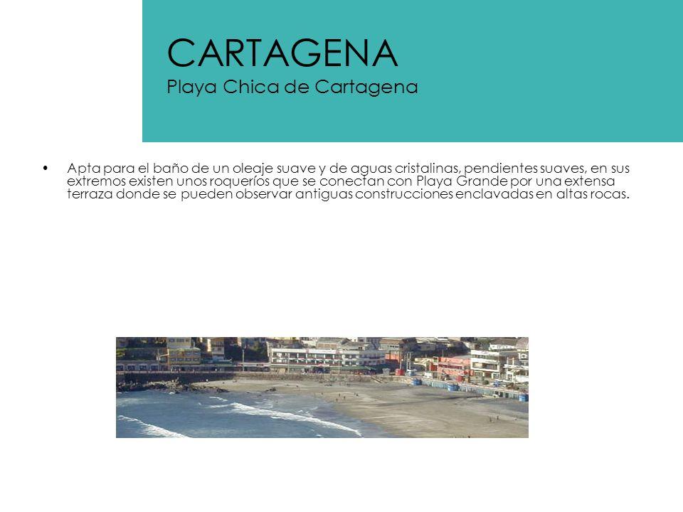 Es la playa mas popular de Chile, concentra una alta afluencia de turistas provenientes en general de santiago.