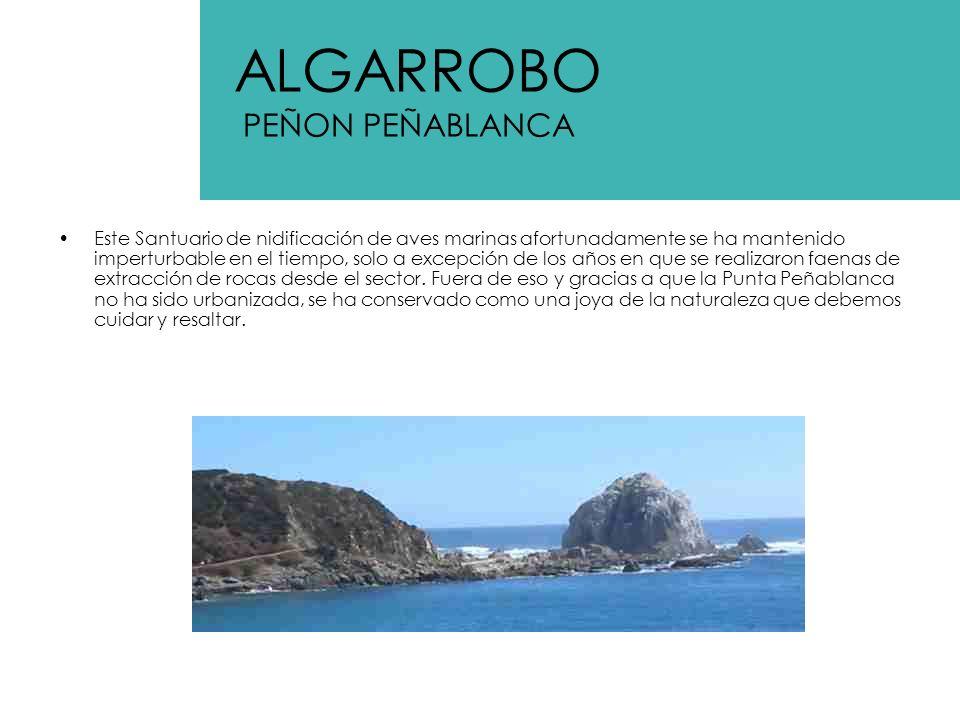 Llamado también antiguamente Islote San pedro por los pescadores de Algarrobo, este Islote o ex Islote esta ubicado al Oeste de la Bahía de Algarrobo y a unos 150 m de distancia inmediatamente al Norte de la Punta del Fraile (33º21 de latitud Sur y 71º41 de longitud oeste).