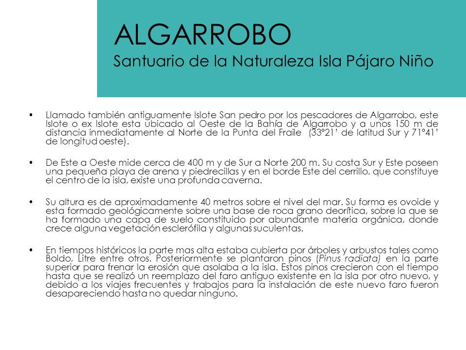 Al igual que los otros puntos de Algarrobo, con características similares; este humedal es punto de concentración de las aves migratorias.