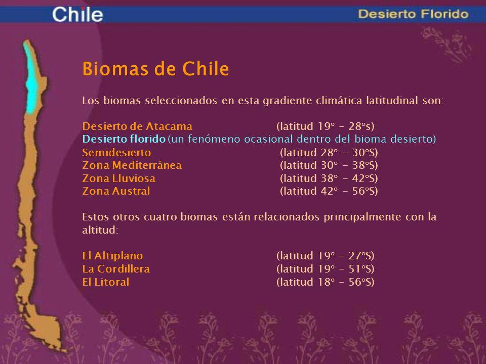 UBICACIÓN GEOGRÁFICA (Latitud)27° - 29° S ALTITUD0 - 450 msnm CLIMAseco PRECIPITACIONESocasionales TEMPERATURA Media anual15° C Promedio temp.