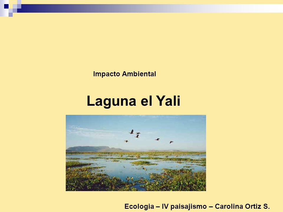 Laguna el Yali Impacto Ambiental Ecologia – IV paisajismo – Carolina Ortiz S.