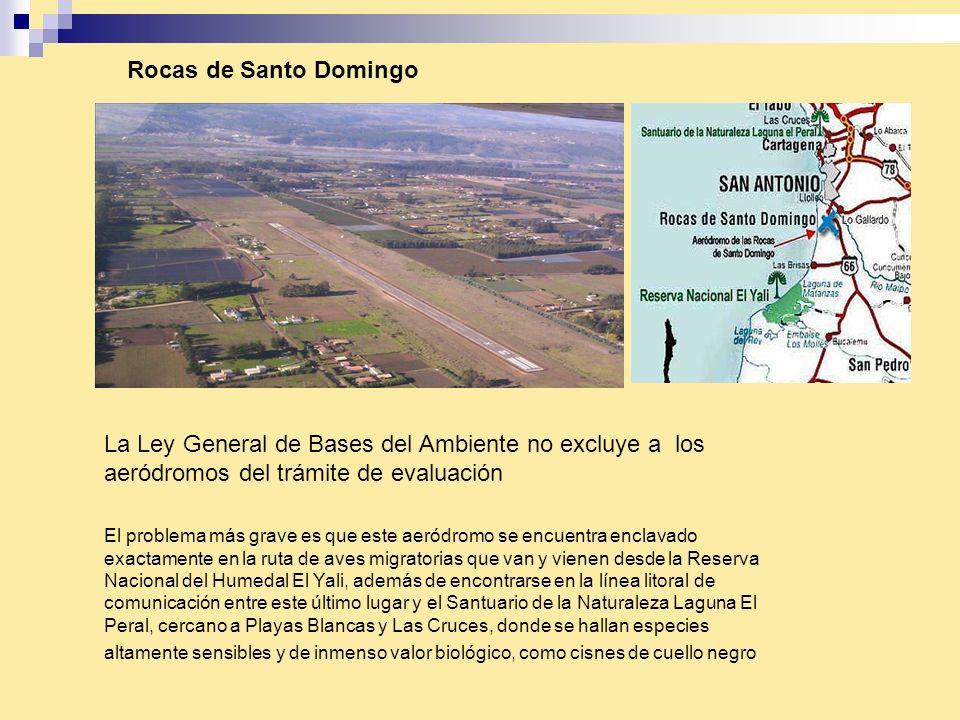 El problema más grave es que este aeródromo se encuentra enclavado exactamente en la ruta de aves migratorias que van y vienen desde la Reserva Nacion