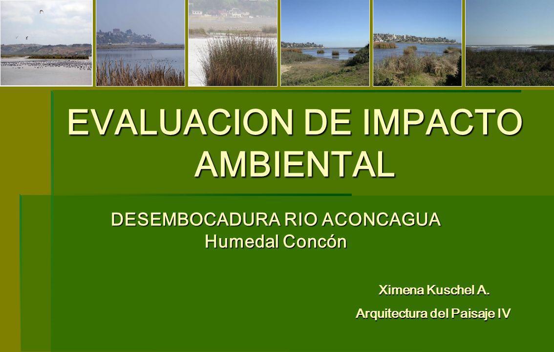 EVALUACION DE IMPACTO AMBIENTAL DESEMBOCADURA RIO ACONCAGUA Humedal Concón Ximena Kuschel A. Ximena Kuschel A. Arquitectura del Paisaje IV
