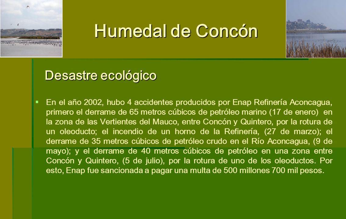 Humedal de Concón En el año 2002, hubo 4 accidentes producidos por Enap Refinería Aconcagua, primero el derrame de 65 metros cúbicos de petróleo marin
