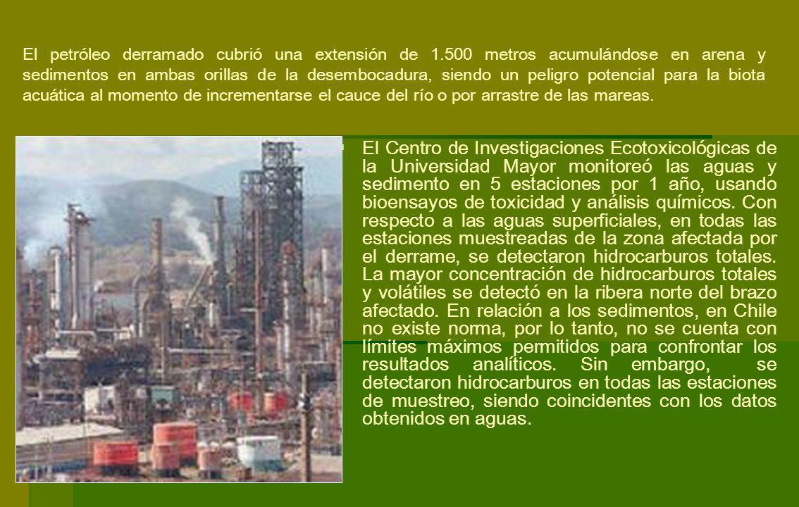 El Centro de Investigaciones Ecotoxicológicas de la Universidad Mayor monitoreó las aguas y sedimento en 5 estaciones por 1 año, usando bioensayos de