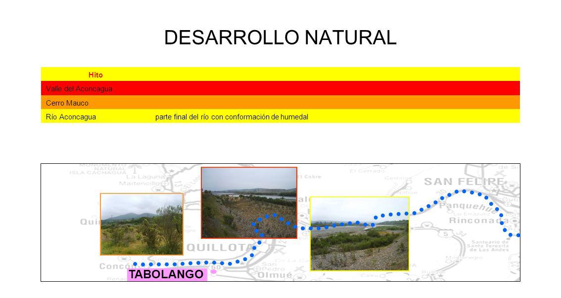 DESARROLLO NATURAL Hito Valle del Aconcagua Cerro Mauco Río Aconcaguaparte final del río con conformación de humedal TABOLANGO
