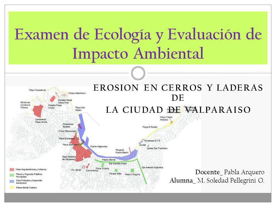 Examen de Ecología y Evaluación de Impacto Ambiental Docente_ Pabla Arquero Alumna_ M. Soledad Pellegrini O. EROSION EN CERROS Y LADERAS DE LA CIUDAD