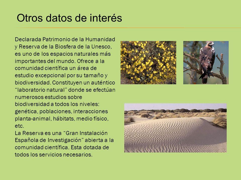 Otros datos de interés Declarada Patrimonio de la Humanidad y Reserva de la Biosfera de la Unesco, es uno de los espacios naturales más importantes de