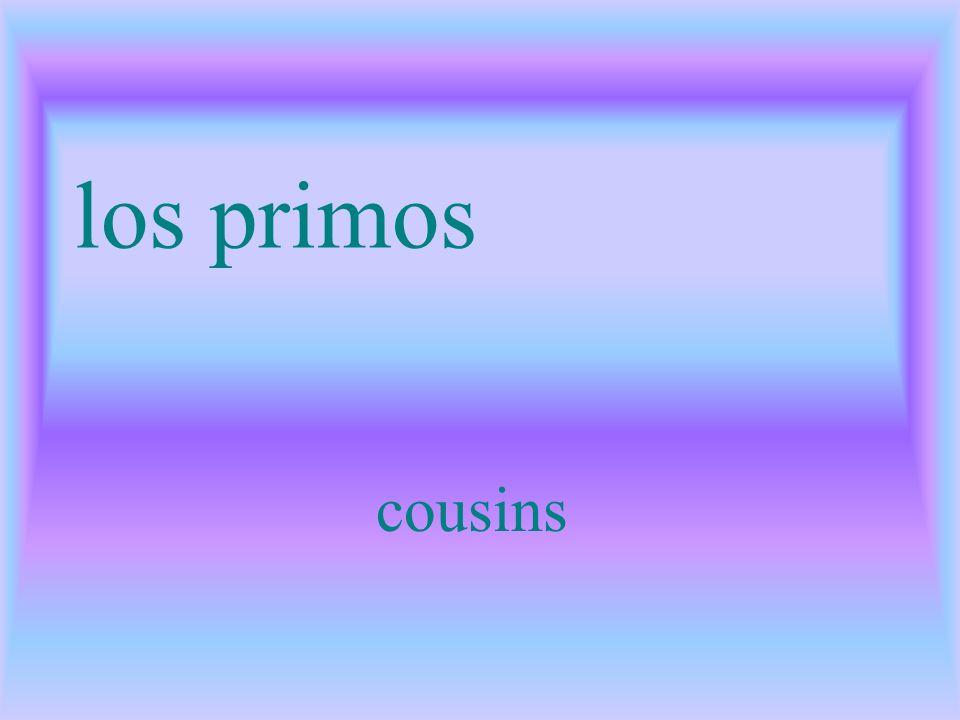 los primos cousins