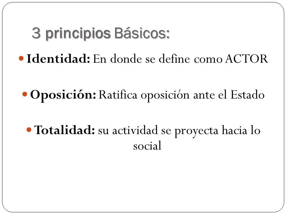 3 principios Básicos: Identidad: En donde se define como ACTOR Oposición: Ratifica oposición ante el Estado Totalidad: su actividad se proyecta hacia