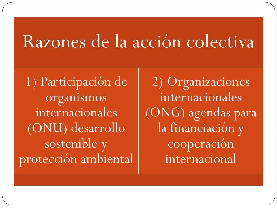 Razones de la acción colectiva 1) Participación de organismos internacionales (ONU) desarrollo sostenible y protección ambiental 2) Organizaciones int