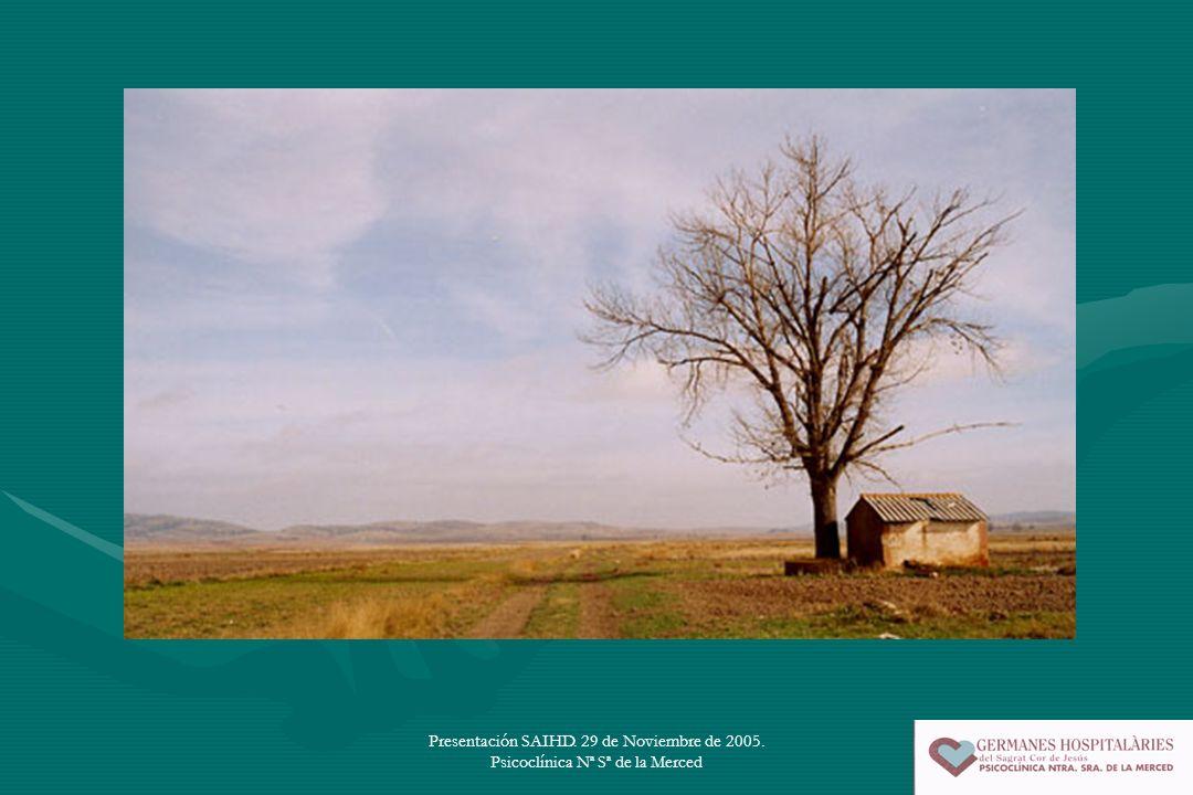 Presentación SAIHD. 29 de Noviembre de 2005. Psicoclínica Nª Sª de la Merced