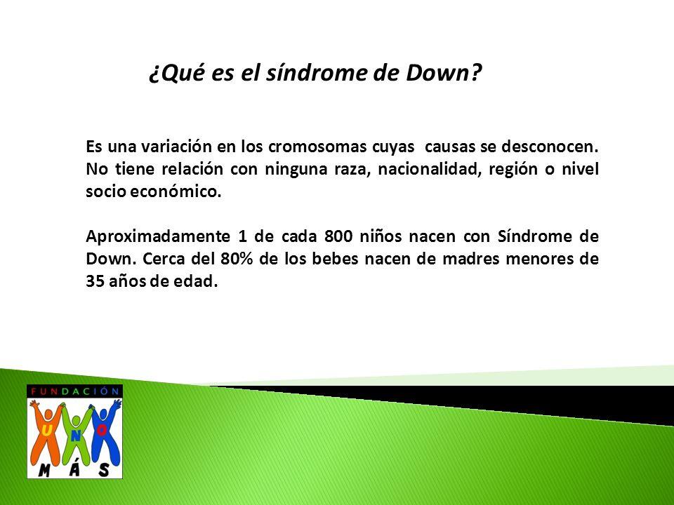 ¿Qué es el síndrome de Down. Es una variación en los cromosomas cuyas causas se desconocen.