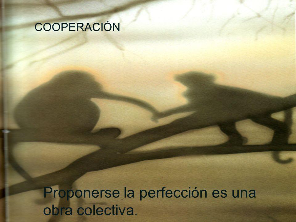 COOPERACIÓN Proponerse la perfección es una obra colectiva.