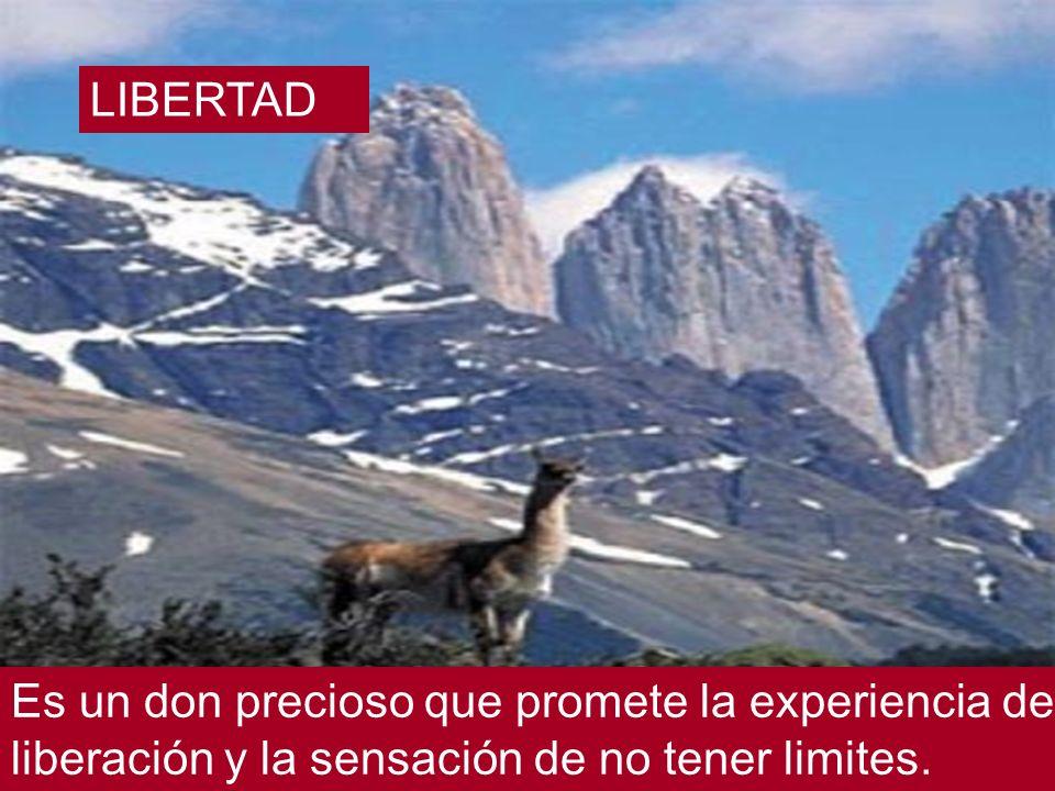 LIBERTAD Es un don precioso que promete la experiencia de liberación y la sensación de no tener limites.