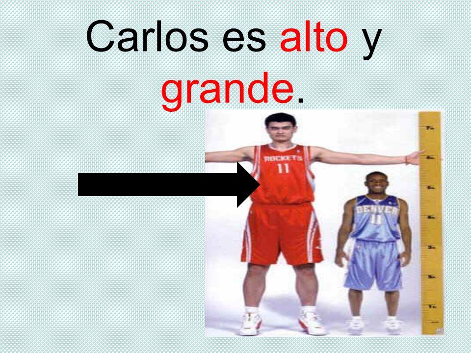 Carlos es alto y grande.