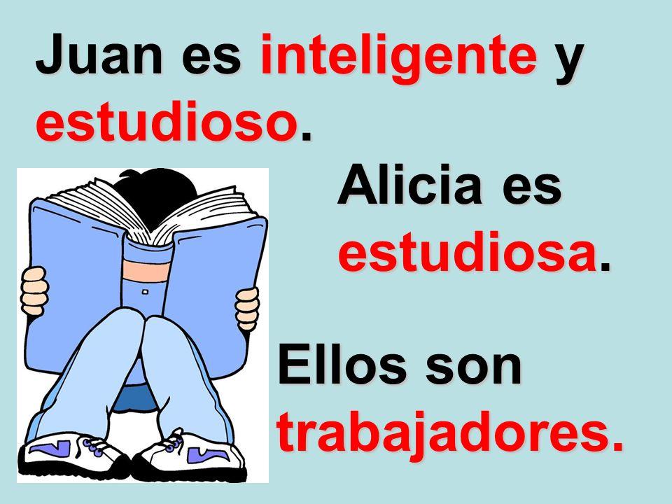 Juan es inteligente y estudioso. Alicia es estudiosa. Ellos son trabajadores.