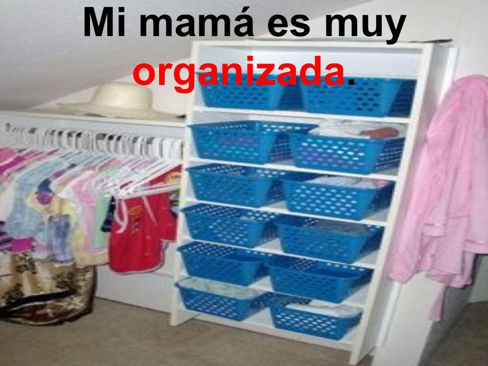 Mi hermano es muy desorganizado.