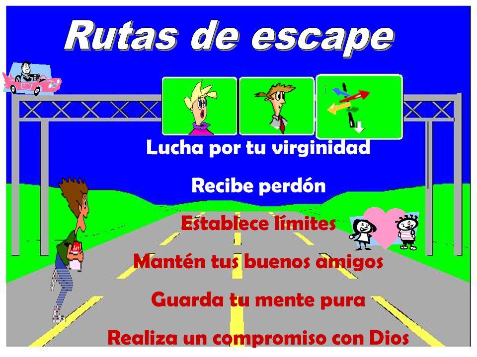 Lucha por tu virginidad Recibe perdón Establece límites Mantén tus buenos amigos Guarda tu mente pura Realiza un compromiso con Dios