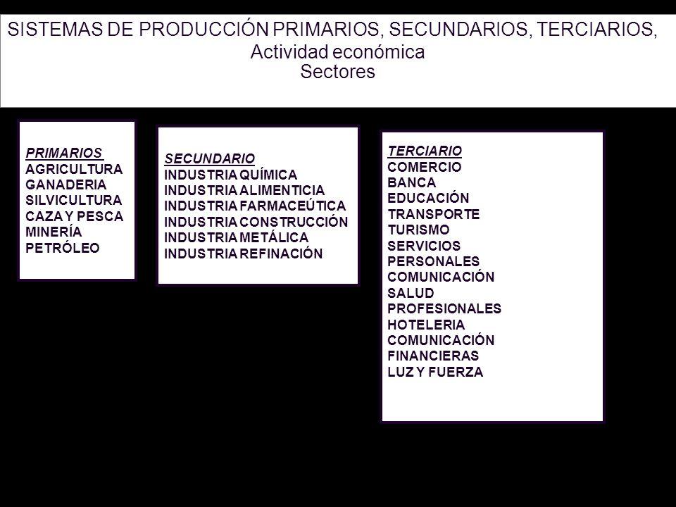 3 SISTEMAS DE PRODUCCIÓN PRIMARIOS, SECUNDARIOS, TERCIARIOS, Actividad económica Sectores PRIMARIOS AGRICULTURA GANADERIA SILVICULTURA CAZA Y PESCA MI