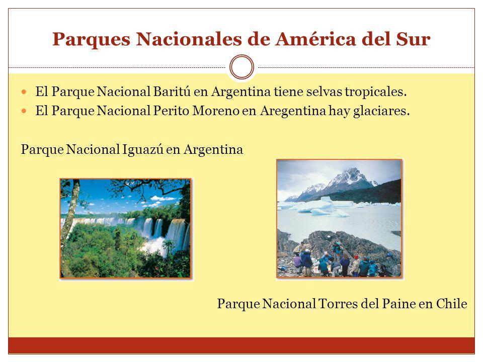 Parques Nacionales de América del Sur El Parque Nacional Baritú en Argentina tiene selvas tropicales. El Parque Nacional Perito Moreno en Aregentina h