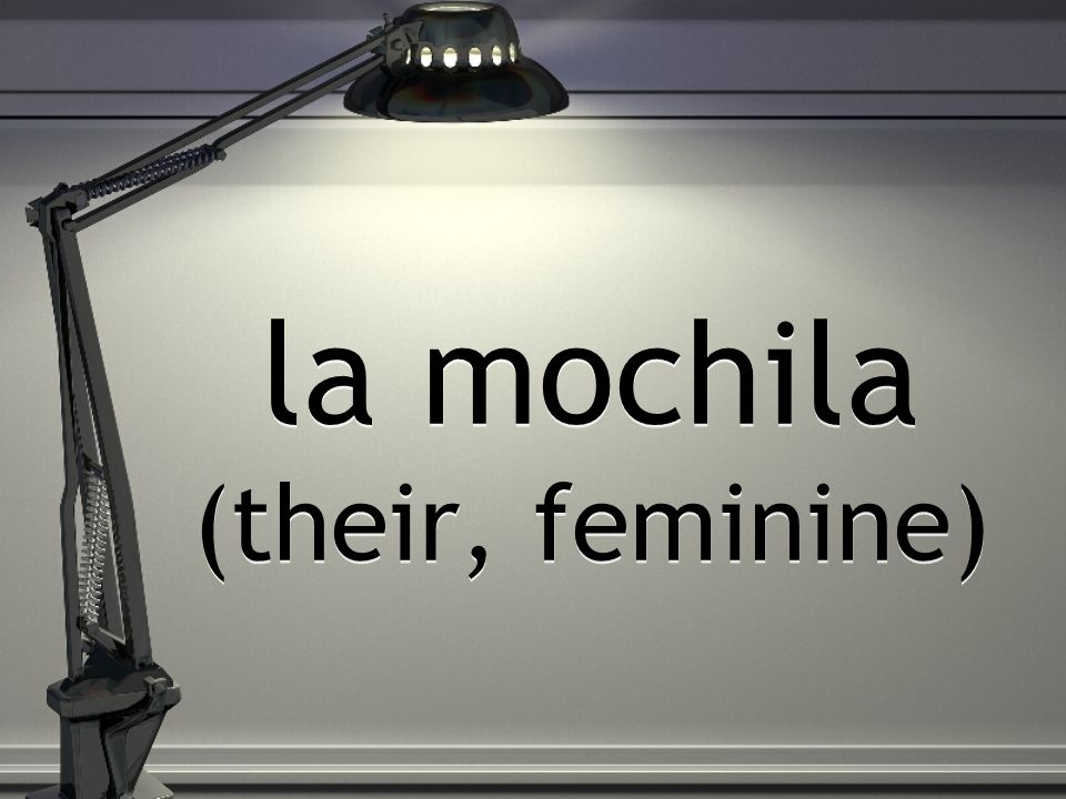 la mochila (their, feminine)