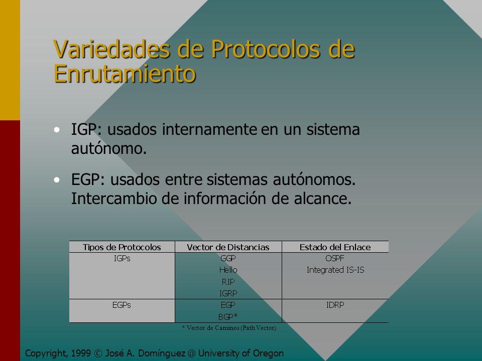 Variedades de Protocolos de Enrutamiento Copyright, 1999 © José A.