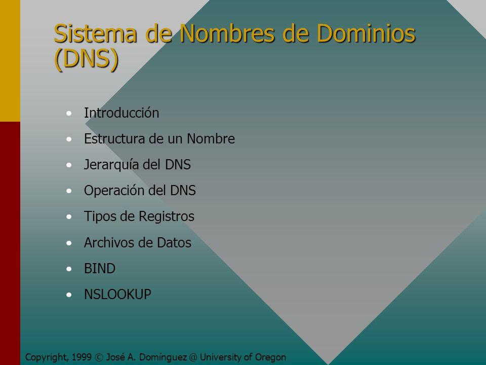 Sistema de Nombres de Dominios (DNS) Introducción Estructura de un Nombre Jerarquía del DNS Operación del DNS Tipos de Registros Archivos de Datos BIN