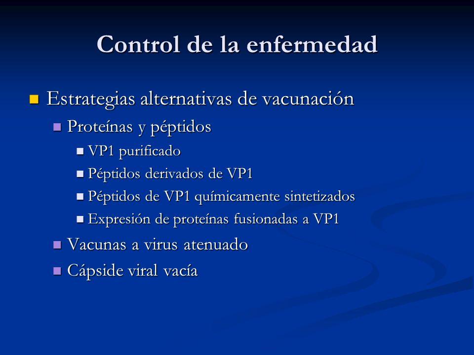 Control de la enfermedad Estrategias alternativas de vacunación Estrategias alternativas de vacunación Proteínas y péptidos Proteínas y péptidos VP1 p
