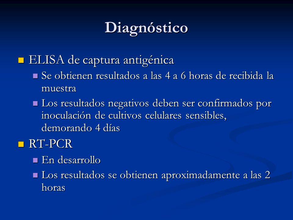 Diagnóstico ELISA de captura antigénica ELISA de captura antigénica Se obtienen resultados a las 4 a 6 horas de recibida la muestra Se obtienen result