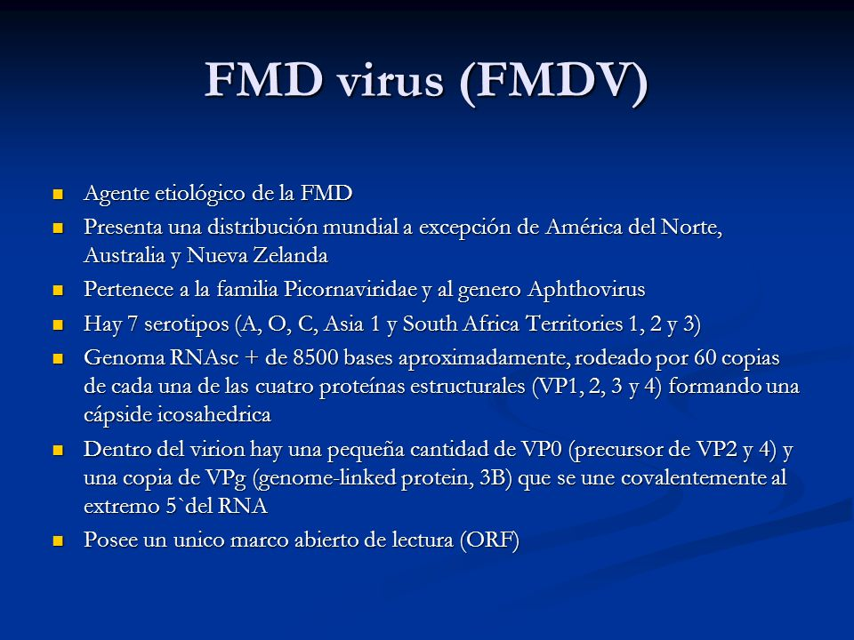 FMD virus (FMDV) Agente etiológico de la FMD Agente etiológico de la FMD Presenta una distribución mundial a excepción de América del Norte, Australia