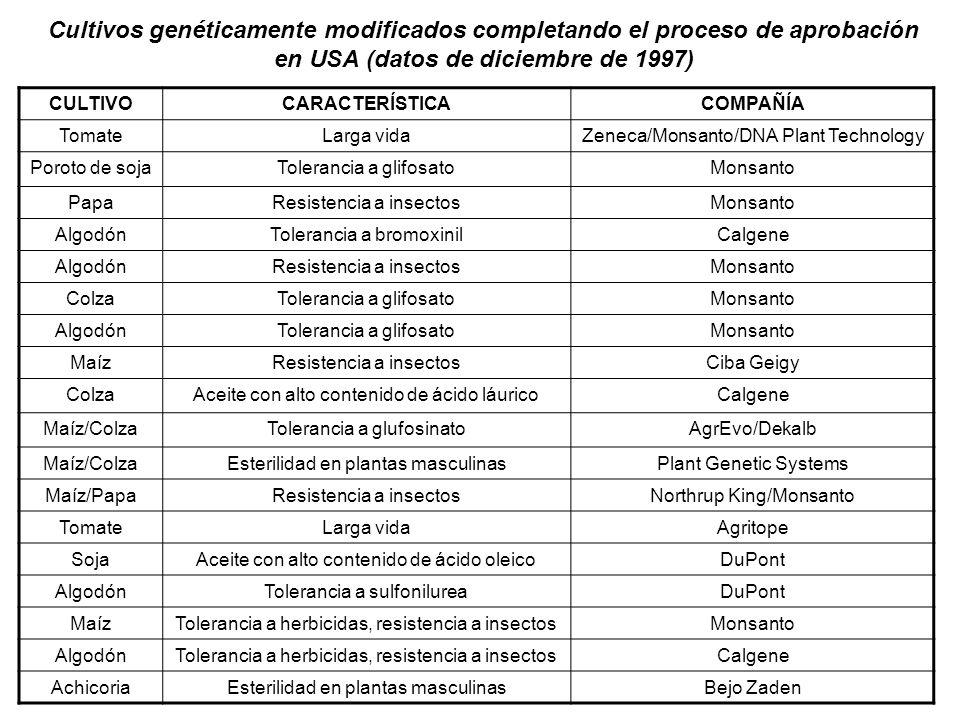 Cultivos genéticamente modificados completando el proceso de aprobación en USA (datos de diciembre de 1997) CULTIVOCARACTERÍSTICACOMPAÑÍA TomateLarga