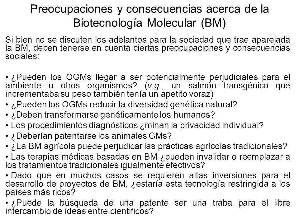 Preocupaciones y consecuencias acerca de la Biotecnología Molecular (BM) Si bien no se discuten los adelantos para la sociedad que trae aparejada la B