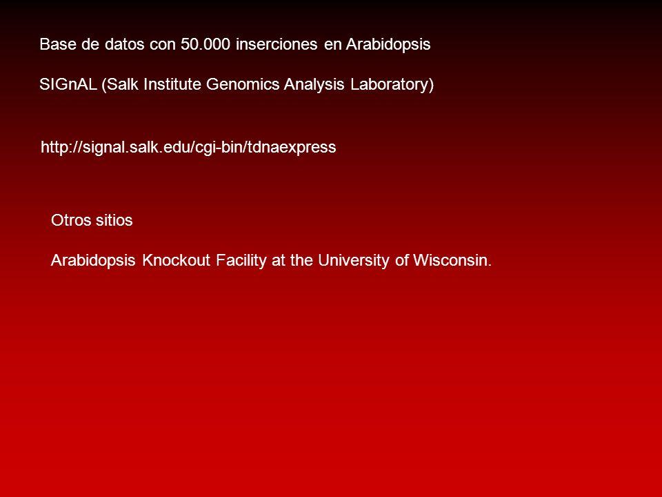 http://signal.salk.edu/cgi-bin/tdnaexpress Base de datos con 50.000 inserciones en Arabidopsis SIGnAL (Salk Institute Genomics Analysis Laboratory) Ot