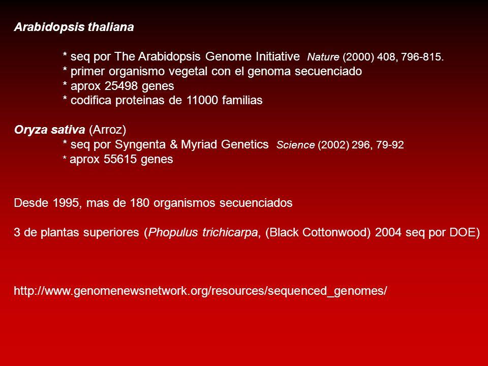 Arabidopsis thaliana * seq por The Arabidopsis Genome Initiative Nature (2000) 408, 796-815. * primer organismo vegetal con el genoma secuenciado * ap