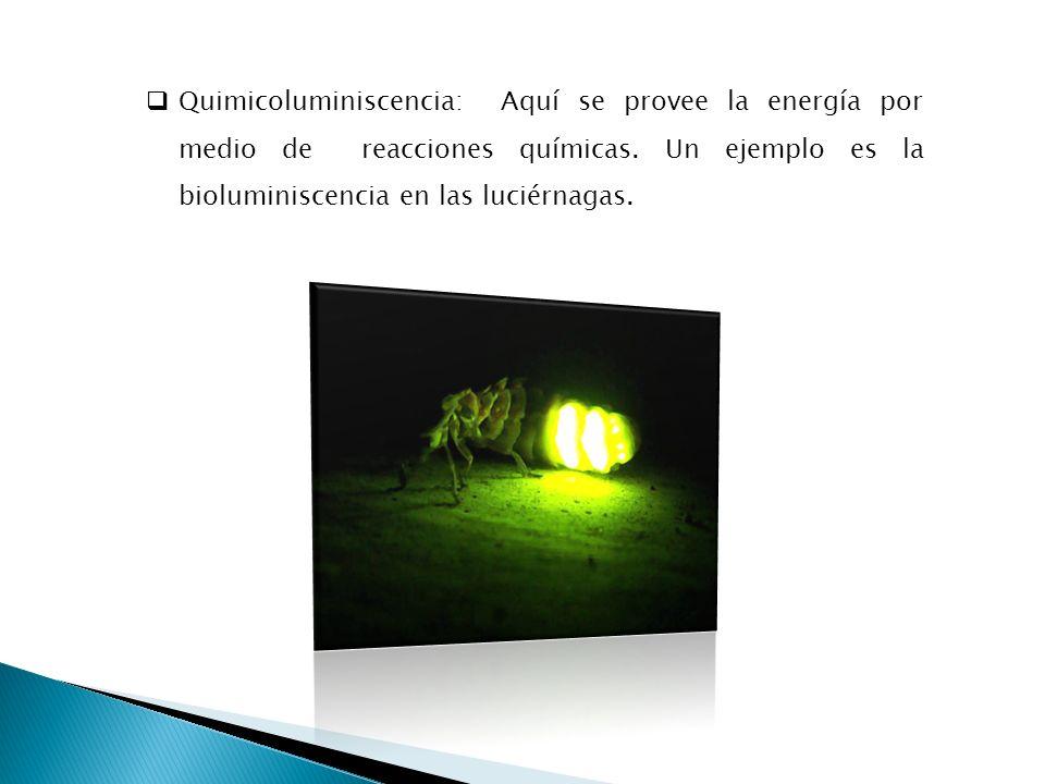 Quimicoluminiscencia: Aquí se provee la energía por medio de reacciones químicas. Un ejemplo es la bioluminiscencia en las luciérnagas.