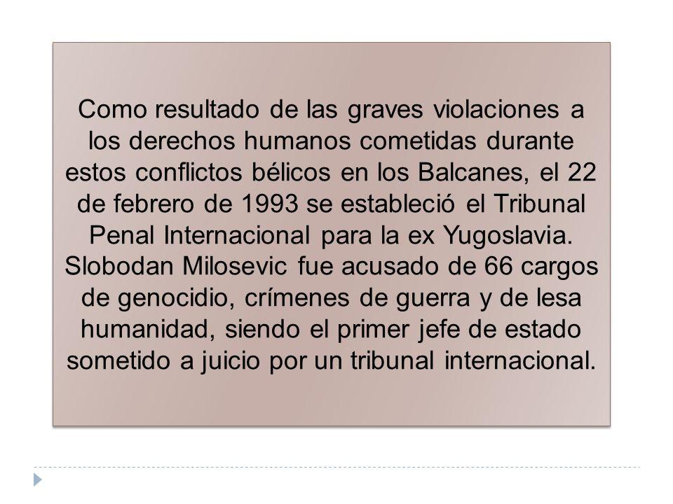 Como resultado de las graves violaciones a los derechos humanos cometidas durante estos conflictos bélicos en los Balcanes, el 22 de febrero de 1993 s