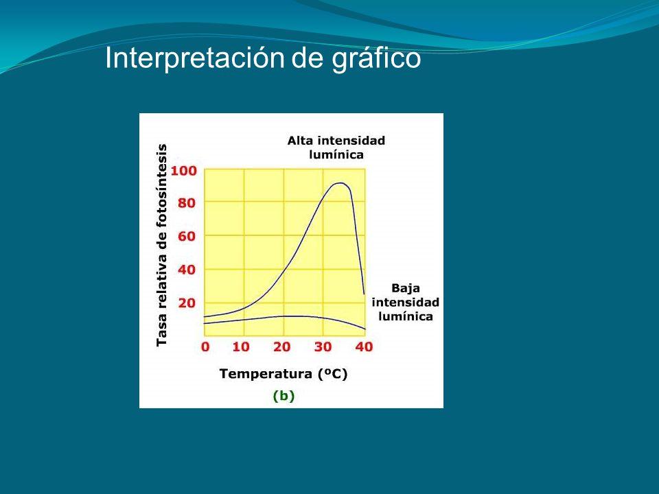 Interpretación de gráfico