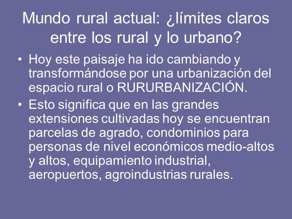 Mundo rural actual: ¿límites claros entre los rural y lo urbano? Hoy este paisaje ha ido cambiando y transformándose por una urbanización del espacio