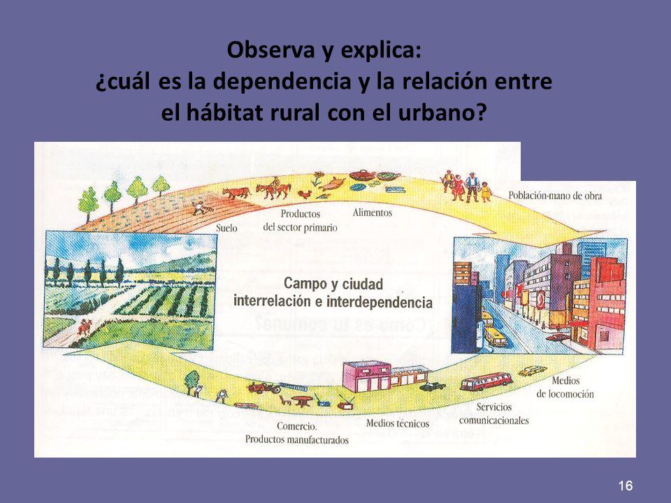 16 Observa y explica: ¿cuál es la dependencia y la relación entre el hábitat rural con el urbano?