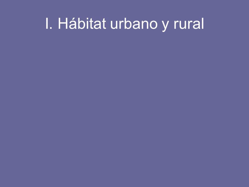 El espacio urbano Entender el espacio urbano significa reconocer su forma peculiar de ocupar el espacio distinto del espacio rural.