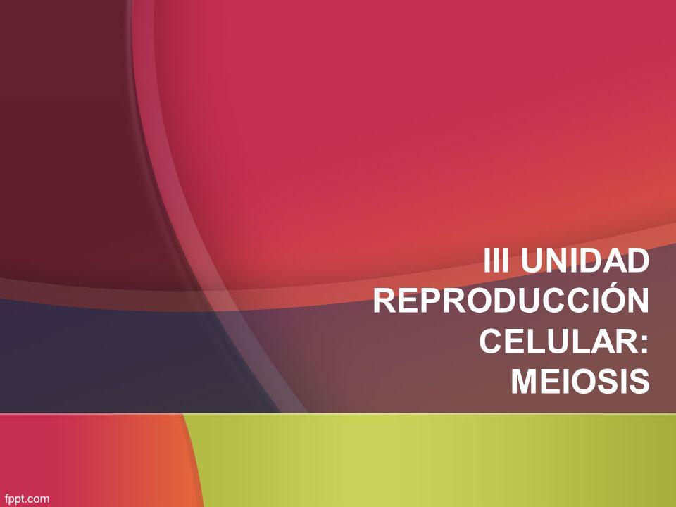 III UNIDAD REPRODUCCIÓN CELULAR: MEIOSIS