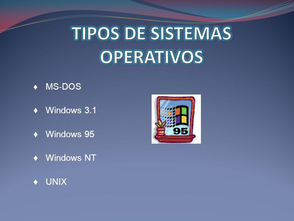 MS-DOS Windows 3.1 Windows 95 Windows NT UNIX